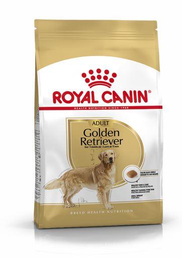 Golden Retriever Adult Pienso para Perro Adulto de Raza