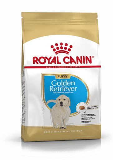 Golden Retriever Puppy Pienso para Cachorro de Raza
