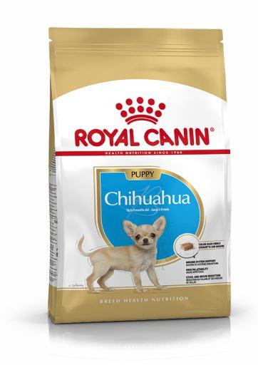 Chihuahua Puppy Pienso para Cachorro de Raza