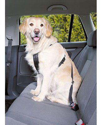 Arnés con cinturón de seguridad para perros M Trixie