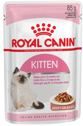 Kitten Comida Húmeda en Salsa para Gatitos